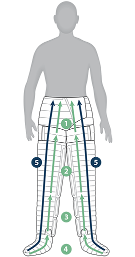 Diagram of bilateral treatment areas